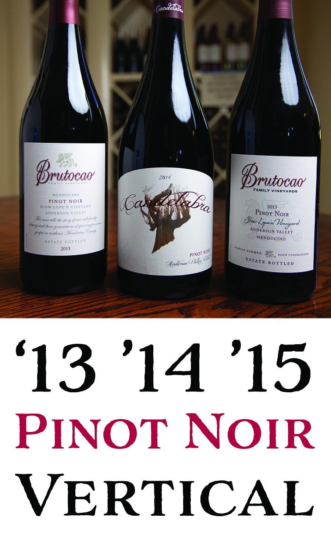 Premium Pinot Noir Vertical - 2013, 2014, 2015 (3 x 750mL)